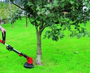 Rasentrimmern um den Apfelbaum