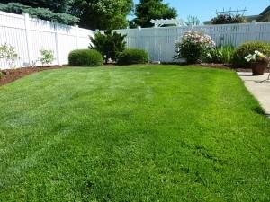 Rasentrimmer und Rasenmäher sorgen für kurz geschnittenes Gras