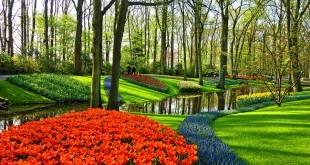 garden-3345970_960_720